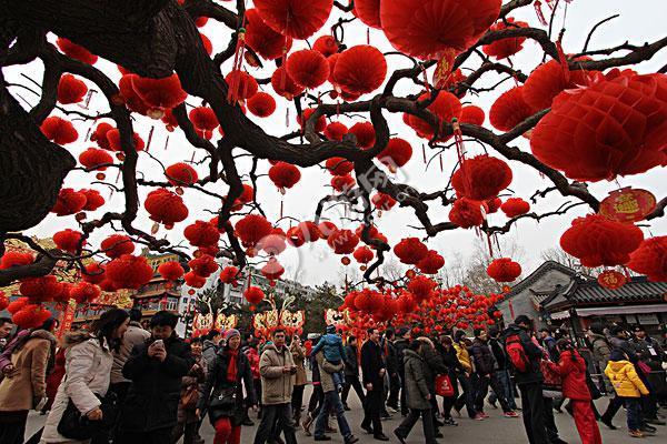 (春节)北京深度老司机福利飞高五日